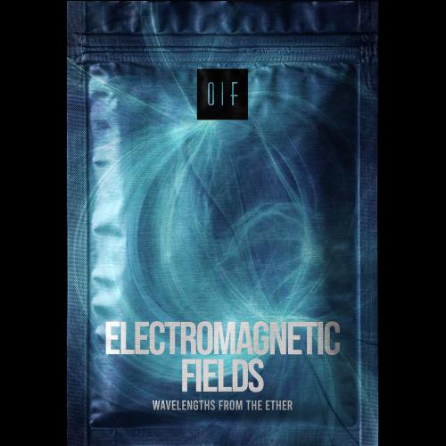 electromagnetic-fields-1-new